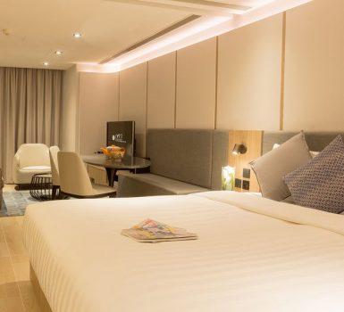 Luxury Service Apartment